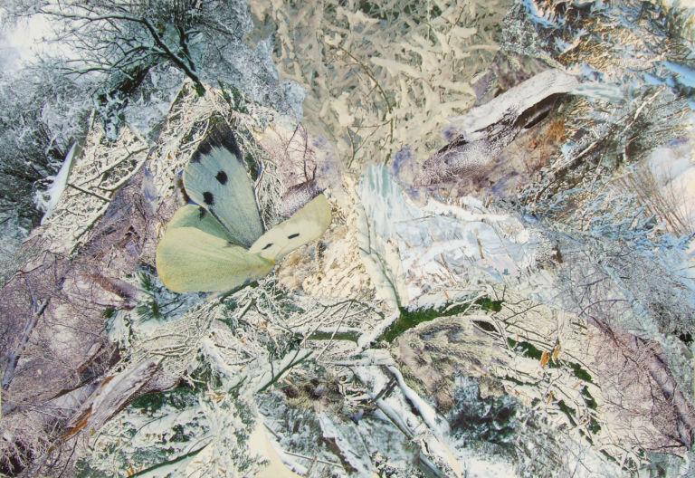 Тропик Водолея